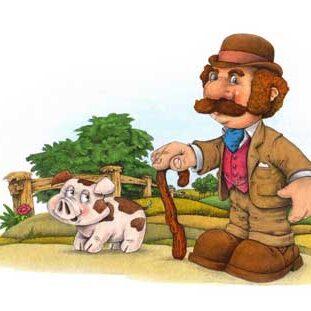 illustration anglais avec un petit cochon