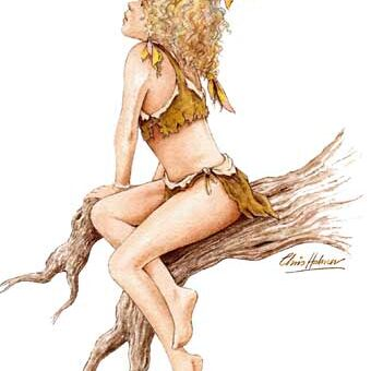 illustration fille elfe sur une branche
